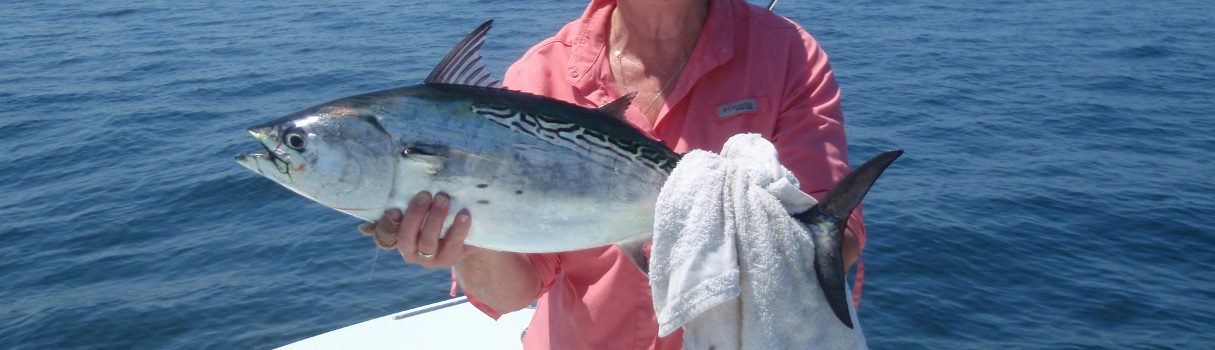 Fly and light tackle fishing mobile bay and alabama for Trout fishing in alabama